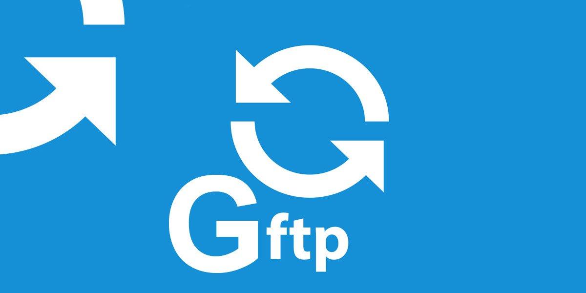 gFTP Modo Consola